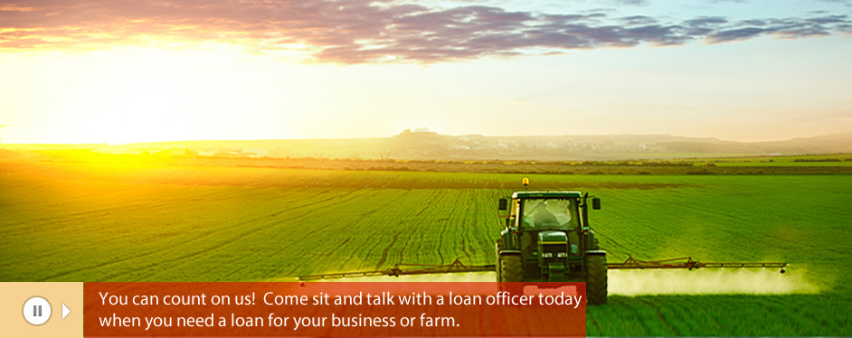 BUSINESS AND AGRICULTURAL LOANS